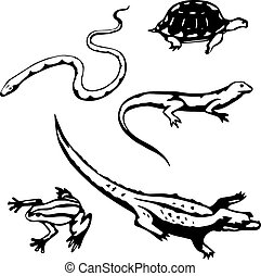 Reptiles and amphibians - Five stylized, vector...