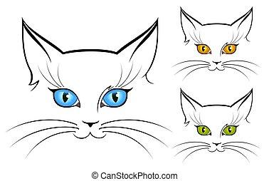 image of cat eyes