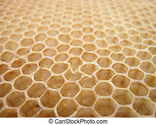 beeswax texture without honey - empty honey texture as nice...