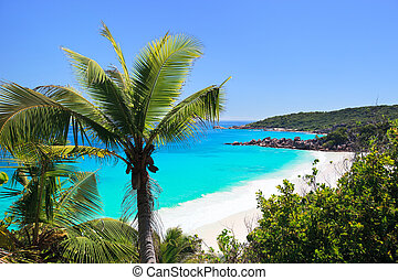 Perfect beach in Seychelles with white sand, turquoise...