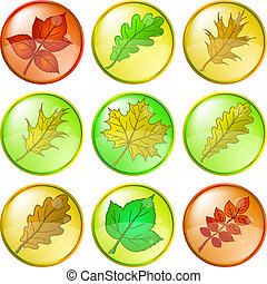 Leaves of plants, buttons, set 2
