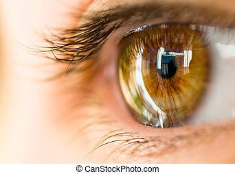 marrón, ojo
