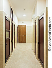 Modern hall interior with many hardwood doors
