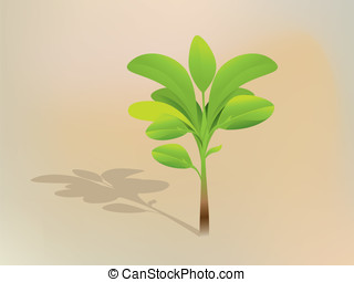seedling - vector leaf and seedling