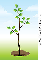 Tree plant on the ground - vector illustration