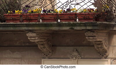 Antique balcony and Flowers