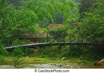 A bridge in the forest