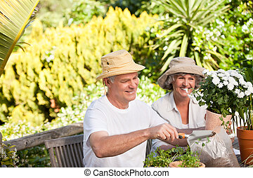 Senior couple sitting in their garden