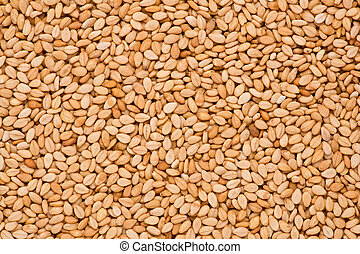 Sesame Seeds (Sesamum indicum) - Close up shot of roasted...