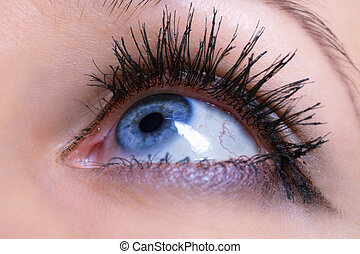 azul, femininas, olho