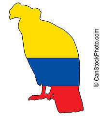 condor,  Ecuador, andino