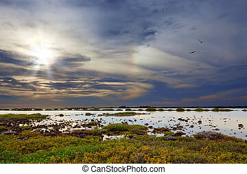 Bonaire lake - Dramatic skies at the lake on Bonaires south...