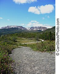 trail in Gros Morne