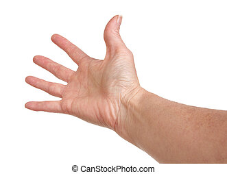 Hand Reaching - Female hand reaching on a white background