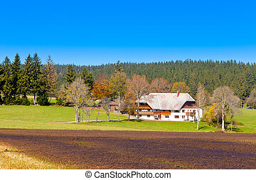 Typical Black Forest Farmhouse - Traditional style farmhouse...