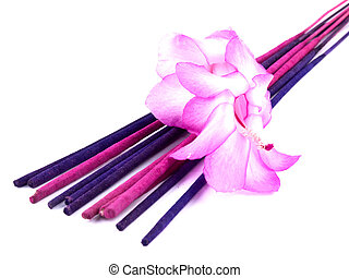 Purple incense and pink cactus flower - Aromatic purple...