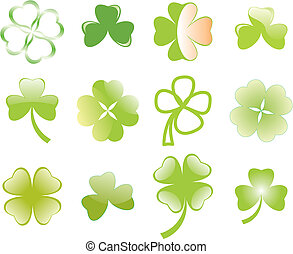 clover or shamrock for Patricks day