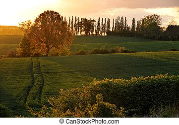 Sunset in Suffolk near Earl Soham