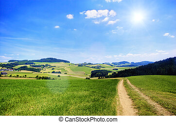 Road in an Austrian Landscape with Sun