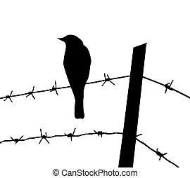 vector silhouette of the bird on barbed wire