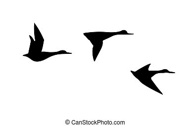 vector silhouette flying duck on white background