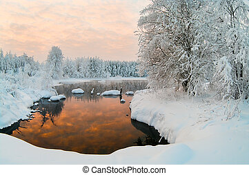 Unfrozen lake in the winter forests of Karelia, Russia Black...