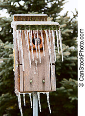 Bird House Icicles - Bluebird House with long icicles...