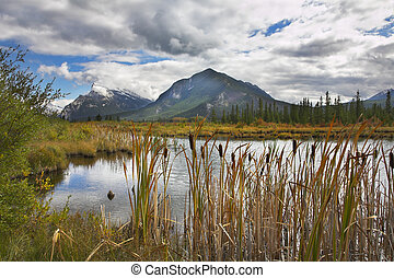 Bog - Picturesque bog on a background of cold mountains of...