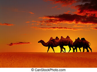 Desert fantasy, camels walking - Desert landscape with...