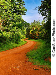African road - Landscape with rainforest and road, Uganda