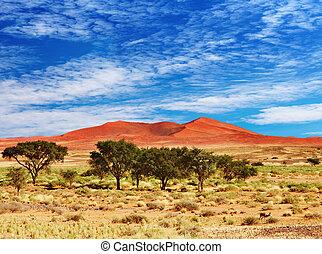 Namib Desert, Sossufley, Namibia - Dunes of Namib Desert,...