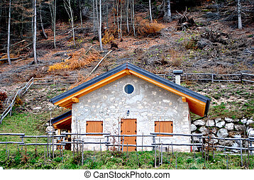 mountain hut in the forest of larch red