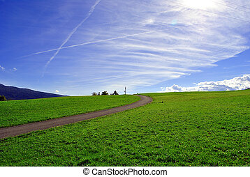 road in the grass