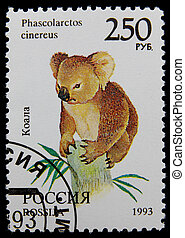 postage stamp - post stamp printed in Russia shows koala