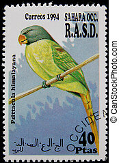 postage stamp - stamp printed in Sahara OCC. R.A.S.D showing...