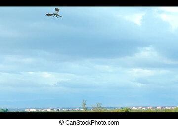 Desert Dragon - Dragon flying on the desert southwest
