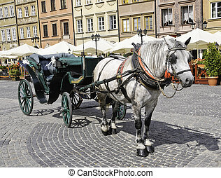 European horse and buggy - A European horse and buggy ready...