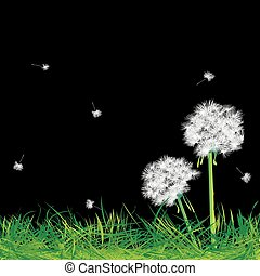 Dandelions and grass in the night, abstract art