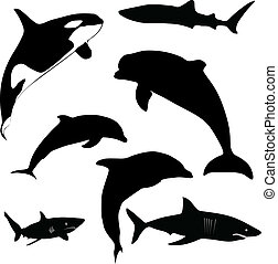sea mammals and sharks vector silhouettes