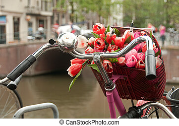 A basket of fresh bouquet of red tulips on a bike - Bicycle...