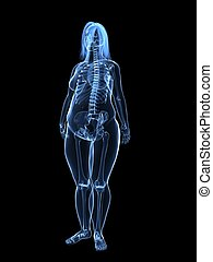 overweight female - skeleton - 3d rendered illustration of a...