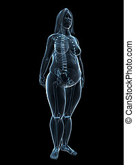 overweight female - anatomy - 3d rendered illustration of a...