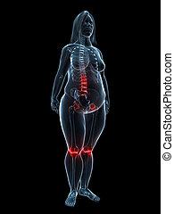 painful joints / backache
