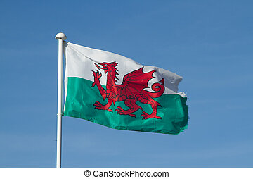 Welsh flag. - Welsh flag, red dragon on a white and green...