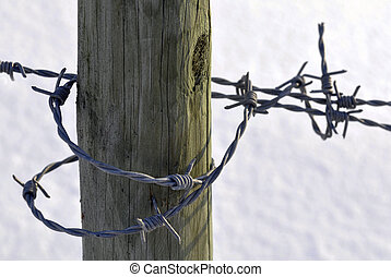 barbed wire on the pole