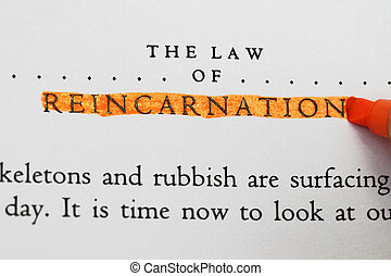 The law of Reincarnation in an old book highlighted