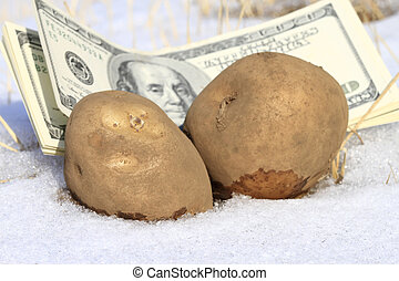 Cold cash and potato concept for frozen economy.