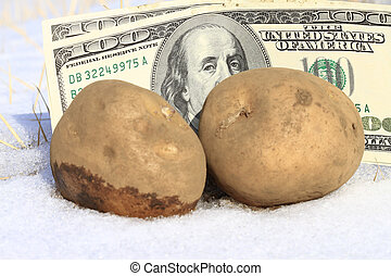 Cold cash concept- potato with snow and dollar background.