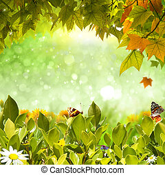 Nature background - Background of nature foliage, butterly,...