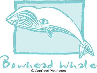 Bowhead, ballena
